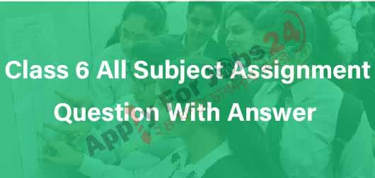 Class 6 Assignment